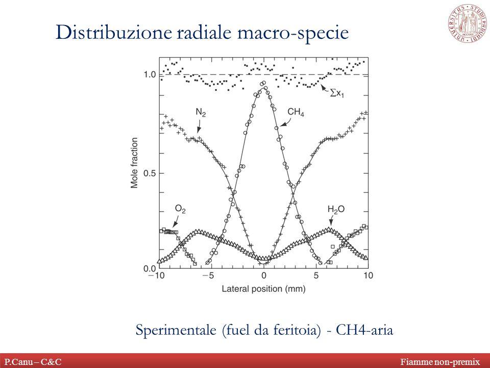 P.Canu – C&C Fiamme non-premix Distribuzione radiale macro-specie Sperimentale (fuel da feritoia) - CH4-aria