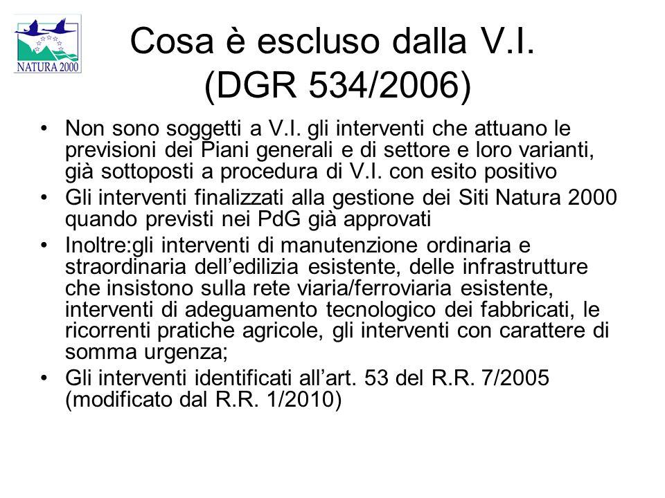 Cosa è escluso dalla V.I. (DGR 534/2006) Non sono soggetti a V.I. gli interventi che attuano le previsioni dei Piani generali e di settore e loro vari