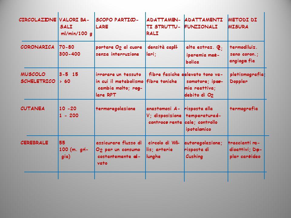 OCIRCOLAZINEVALORI BA- SALI ml/min/100 g SCOPO PARTICO- LARE ADATTAMEN- TI STRUTTU- RALI ADATTAMENTI FUNZIONALI METODI DI MISURA CORONARICA70-80 300-4
