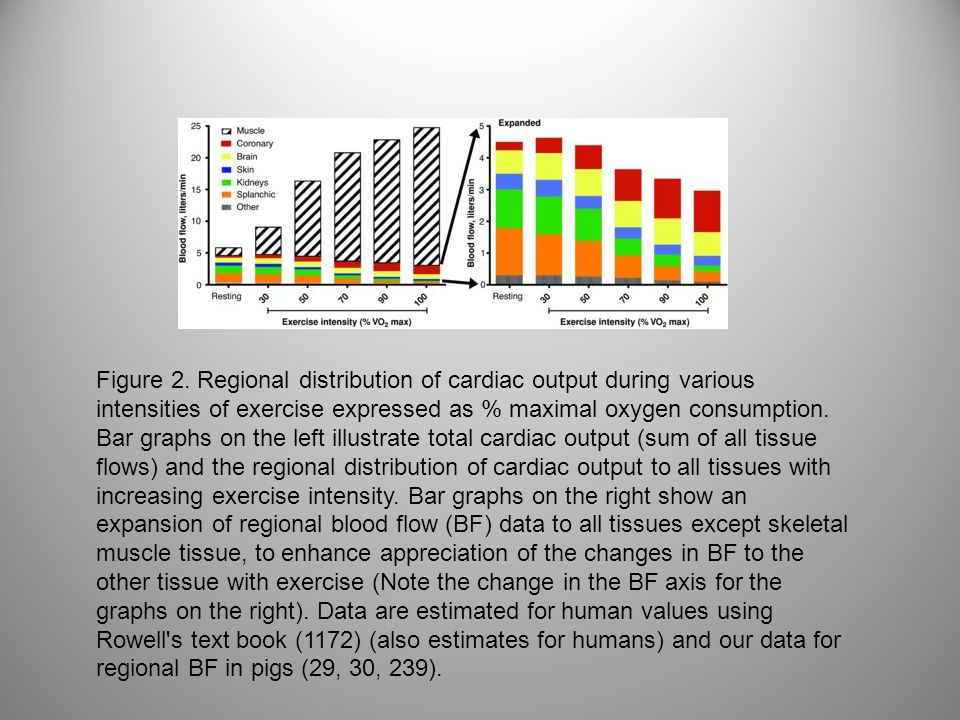 Figure 2. Regional distribution of cardiac output during various intensities of exercise expressed as % maximal oxygen consumption. Bar graphs on the