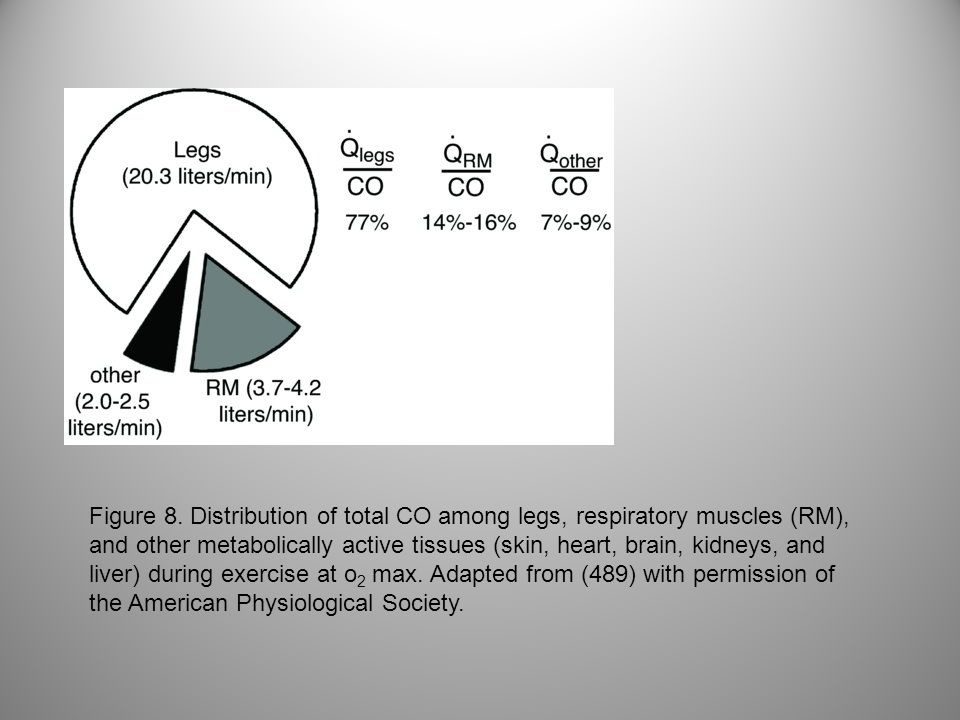 Figure 8. Distribution of total CO among legs, respiratory muscles (RM), and other metabolically active tissues (skin, heart, brain, kidneys, and live