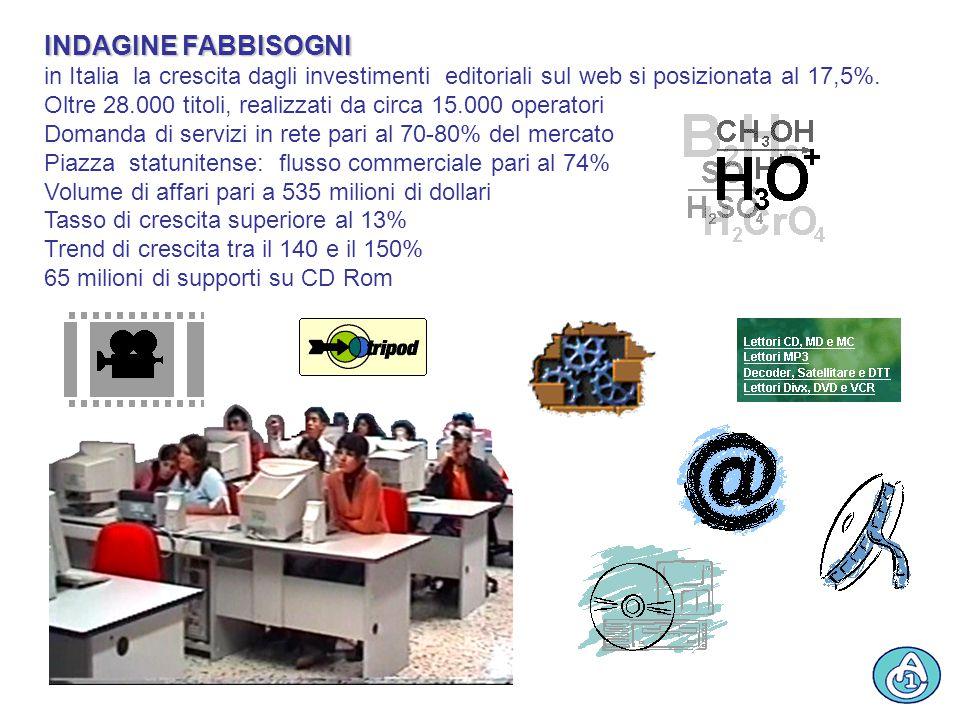 INDAGINE FABBISOGNI in Italia la crescita dagli investimenti editoriali sul web si posizionata al 17,5%.