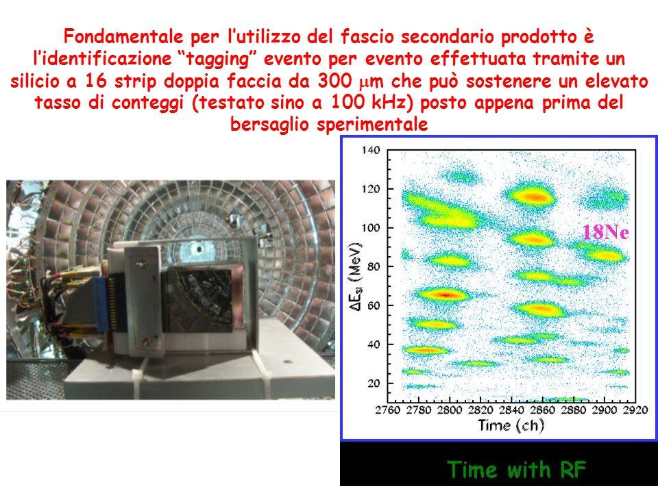Fondamentale per l'utilizzo del fascio secondario prodotto è l'identificazione tagging evento per evento effettuata tramite un silicio a 16 strip doppia faccia da 300  m che può sostenere un elevato tasso di conteggi (testato sino a 100 kHz) posto appena prima del bersaglio sperimentale