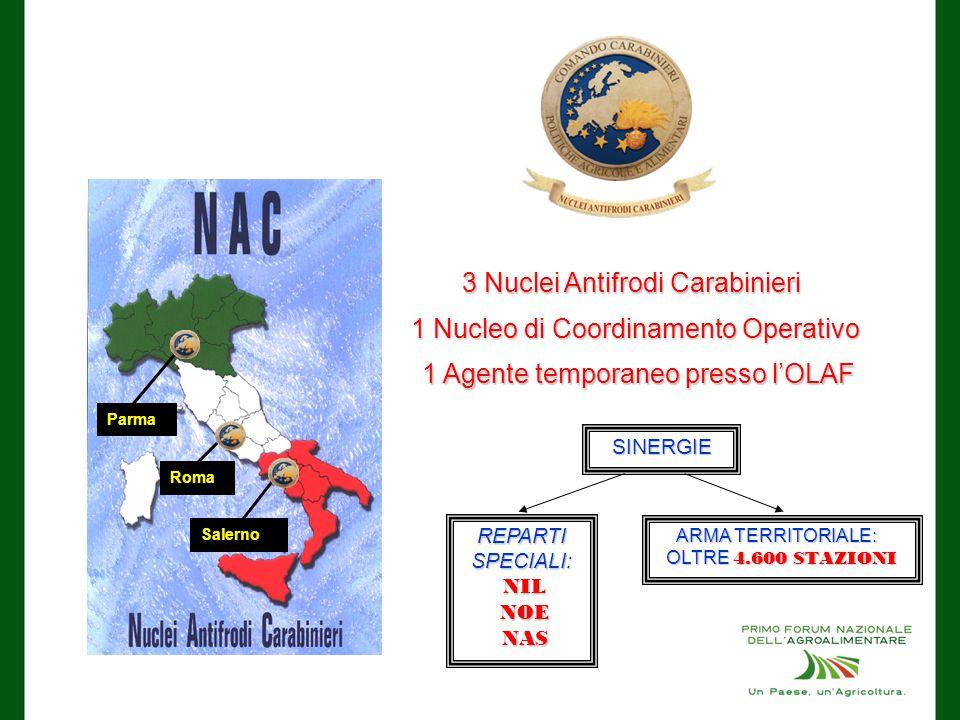 Parma Salerno Roma 3 Nuclei Antifrodi Carabinieri 1 Nucleo di Coordinamento Operativo 1 Agente temporaneo presso l'OLAF SINERGIE REPARTI SPECIALI: NIL NIL NOE NOE NAS NAS ARMA TERRITORIALE: ARMA TERRITORIALE: OLTRE 4.600 STAZIONI OLTRE 4.600 STAZIONI
