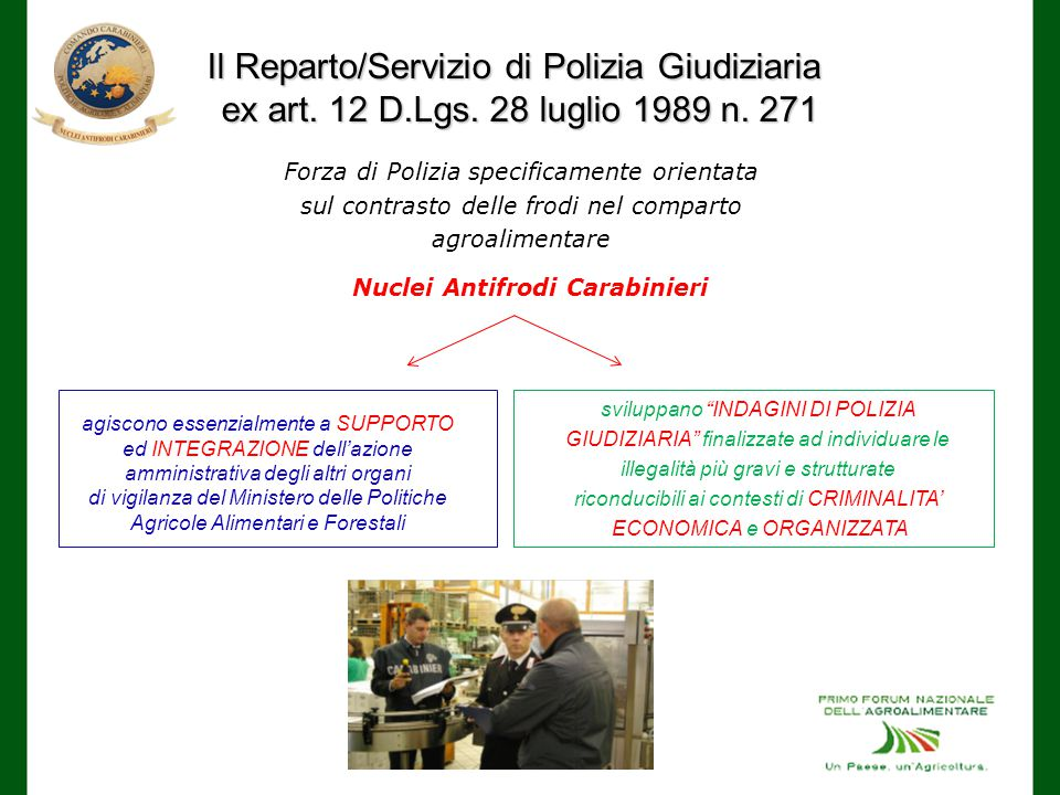 Il Reparto/Servizio di Polizia Giudiziaria ex art.