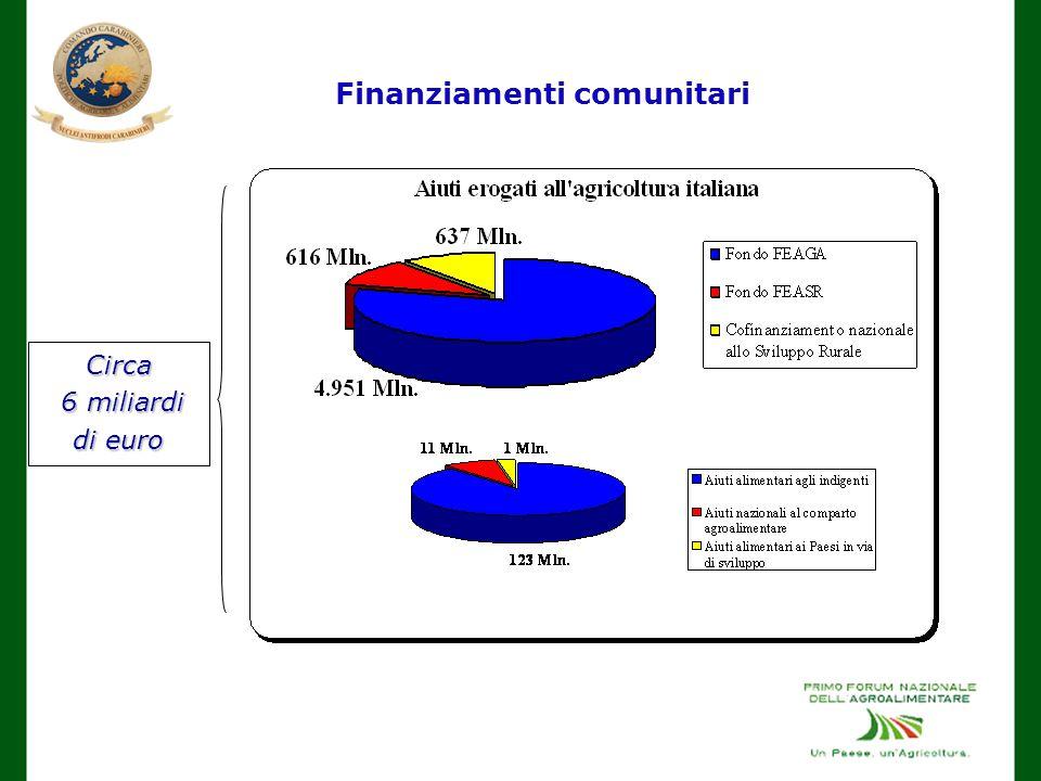 Finanziamenti comunitari Circa 6 miliardi di euro 6 miliardi di euro