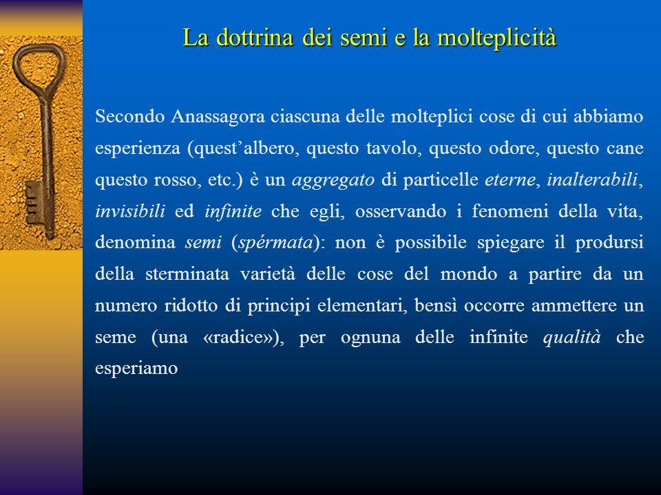 La dottrina dei semi e la molteplicità Secondo Anassagora ciascuna delle molteplici cose di cui abbiamo esperienza (quest'albero, questo tavolo, quest