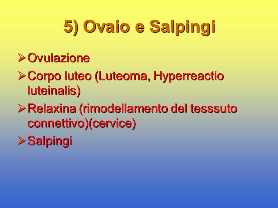 5) Ovaio e Salpingi  Ovulazione  Corpo luteo (Luteoma, Hyperreactio luteinalis)  Relaxina (rimodellamento del tesssuto connettivo)(cervice)  Salpi