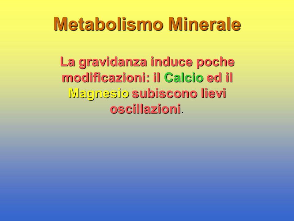 Metabolismo Minerale La gravidanza induce poche modificazioni: il Calcio ed il Magnesio subiscono lievi oscillazioni La gravidanza induce poche modifi