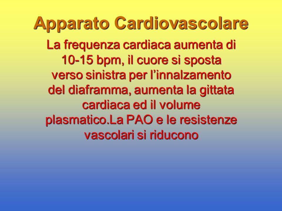 Apparato Cardiovascolare La frequenza cardiaca aumenta di 10-15 bpm, il cuore si sposta verso sinistra per l'innalzamento del diaframma, aumenta la gi