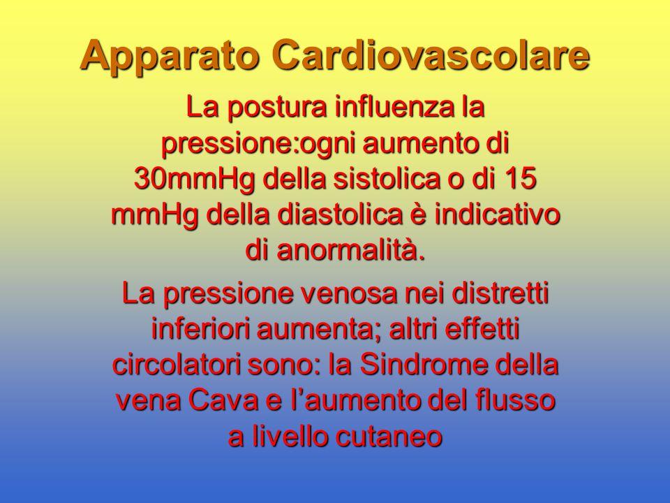 Apparato Cardiovascolare La postura influenza la pressione:ogni aumento di 30mmHg della sistolica o di 15 mmHg della diastolica è indicativo di anorma