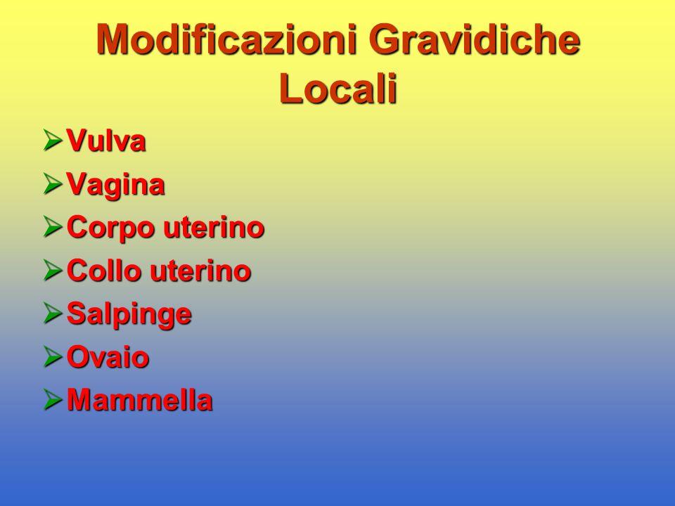Modificazioni Gravidiche Locali  Vulva  Vagina  Corpo uterino  Collo uterino  Salpinge  Ovaio  Mammella