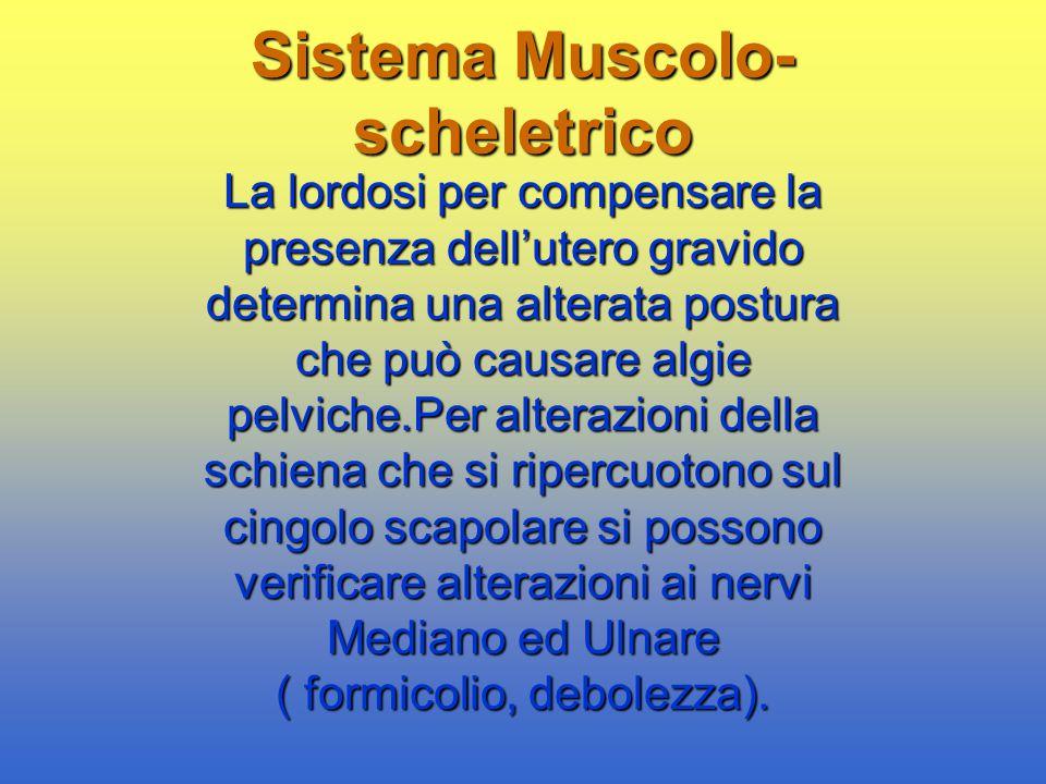 Sistema Muscolo- scheletrico La lordosi per compensare la presenza dell'utero gravido determina una alterata postura che può causare algie pelviche.Pe