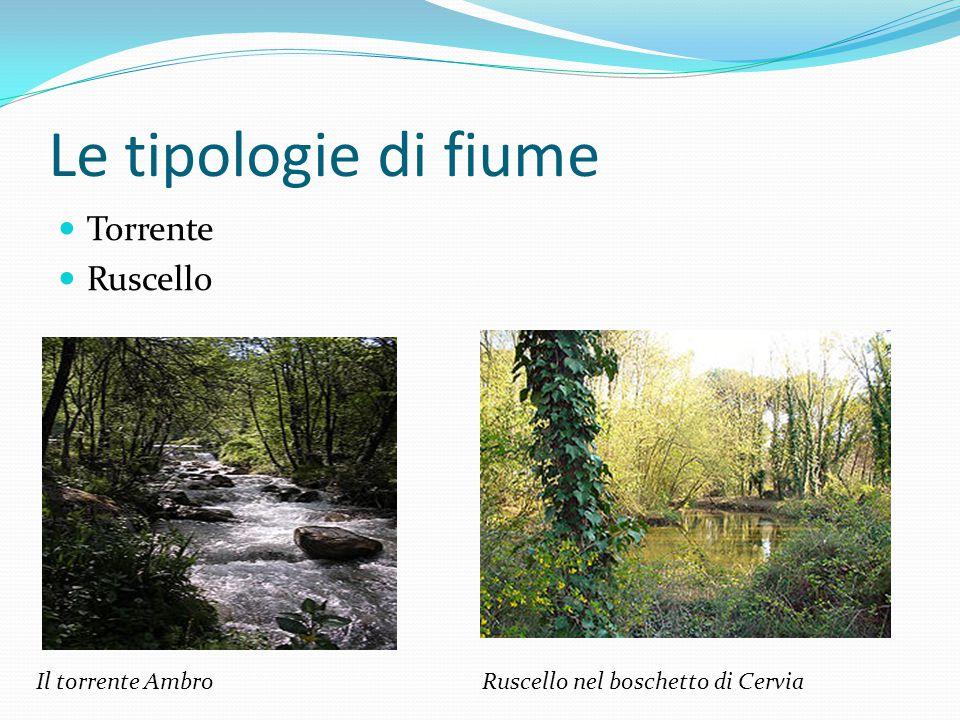 I fiumi più importanti d'Italia Per lunghezza: Po Adige Tevere Per portata: Po Ticino Adda(Lombardia)