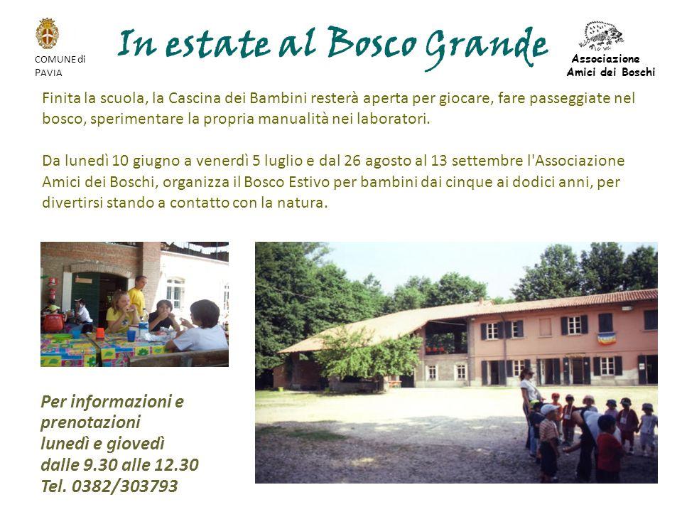 In estate al Bosco Grande Finita la scuola, la Cascina dei Bambini resterà aperta per giocare, fare passeggiate nel bosco, sperimentare la propria manualità nei laboratori.