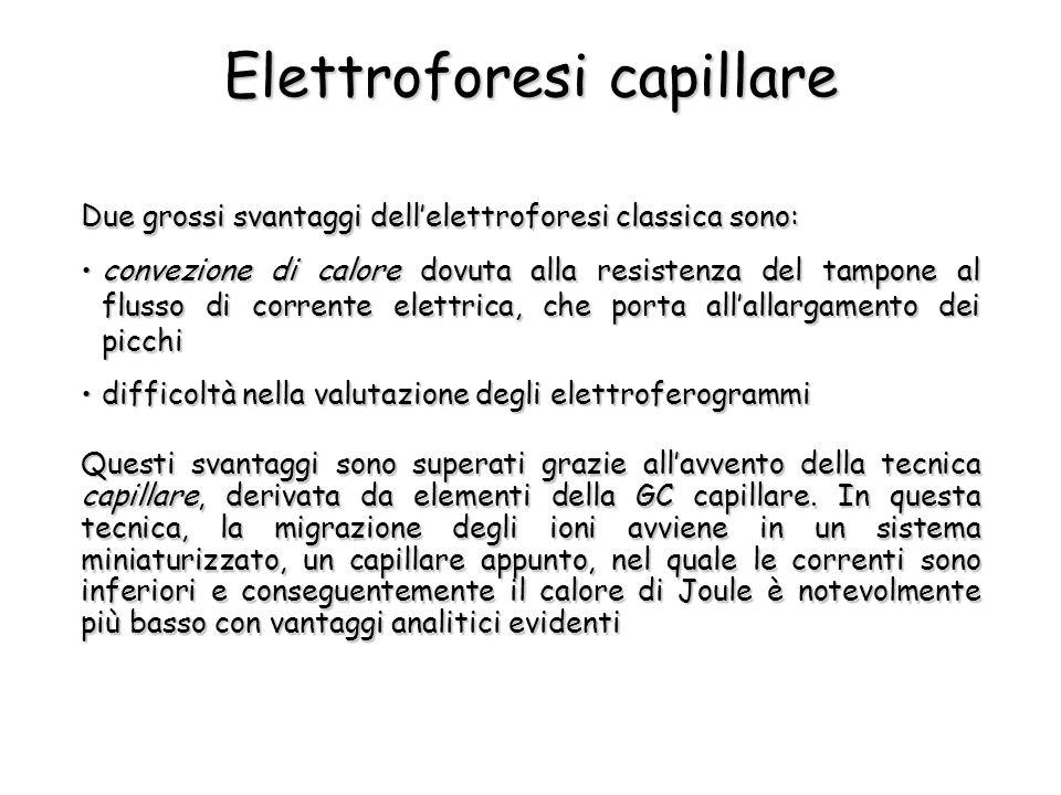 Elettroforesi capillare Due grossi svantaggi dell'elettroforesi classica sono: Questi svantaggi sono superati grazie all'avvento della tecnica capilla