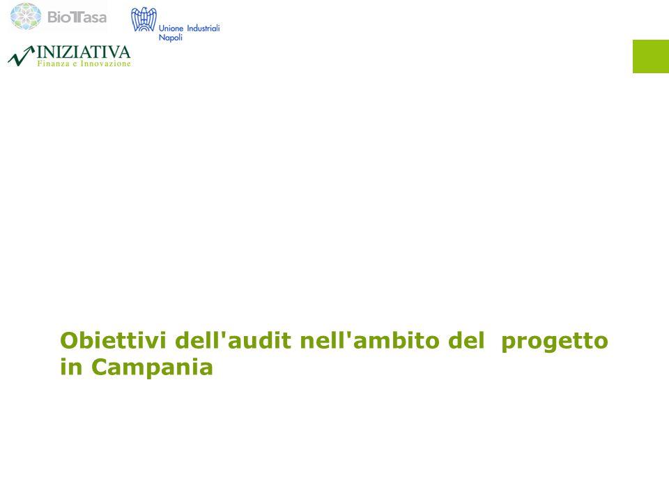 Obiettivi dell audit nell ambito del progetto in Campania