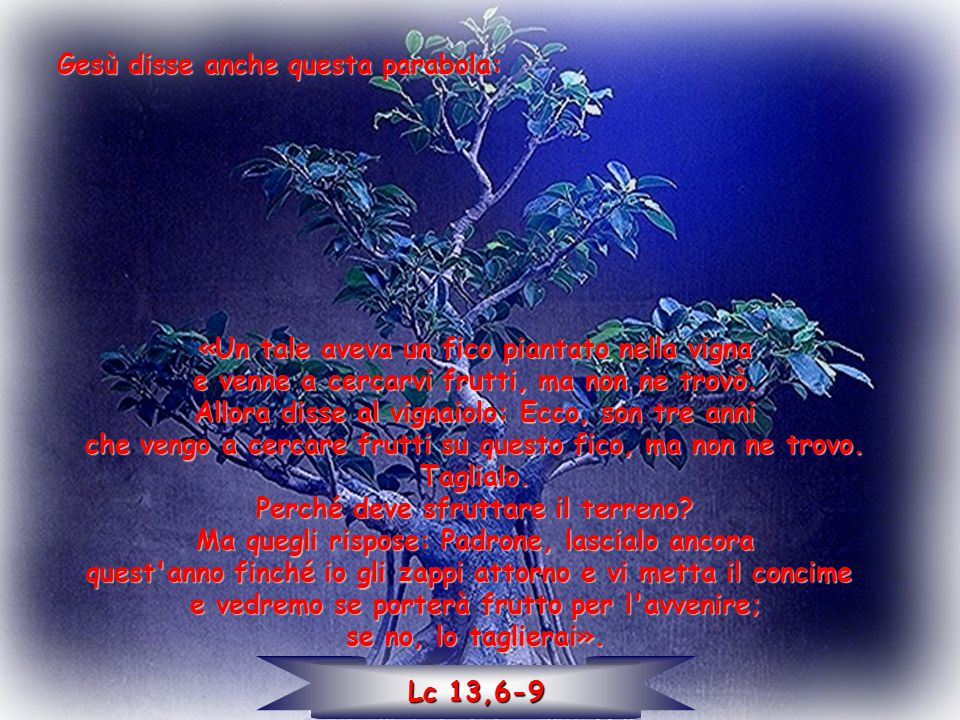 Gesù disse anche questa parabola: «Un tale aveva un fico piantato nella vigna e venne a cercarvi frutti, ma non ne trovò. Allora disse al vignaiolo: E
