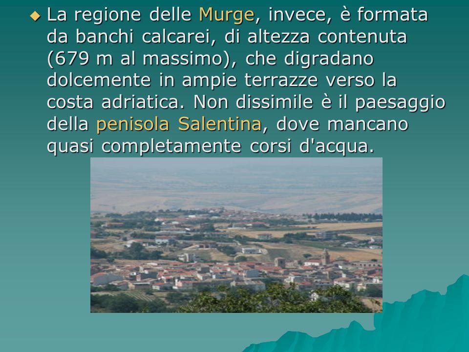 La regione delle Murge, invece, è formata da banchi calcarei, di altezza contenuta (679 m al massimo), che digradano dolcemente in ampie terrazze ve