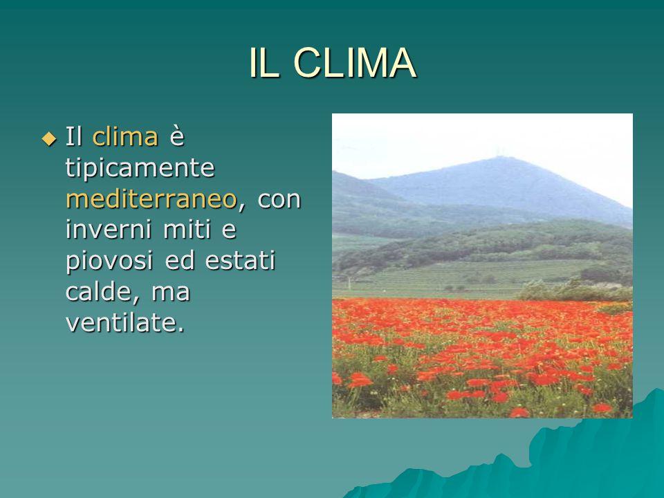 IL CLIMA  Il clima è tipicamente mediterraneo, con inverni miti e piovosi ed estati calde, ma ventilate.