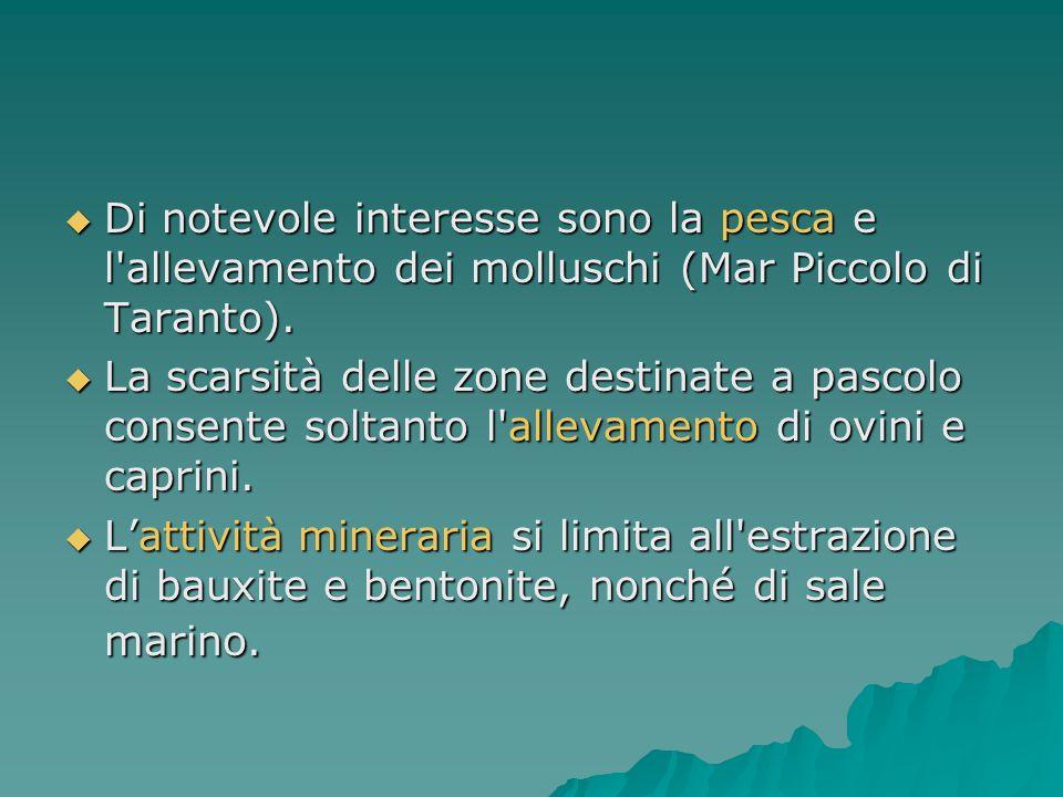  Di notevole interesse sono la pesca e l'allevamento dei molluschi (Mar Piccolo di Taranto).  La scarsità delle zone destinate a pascolo consente so