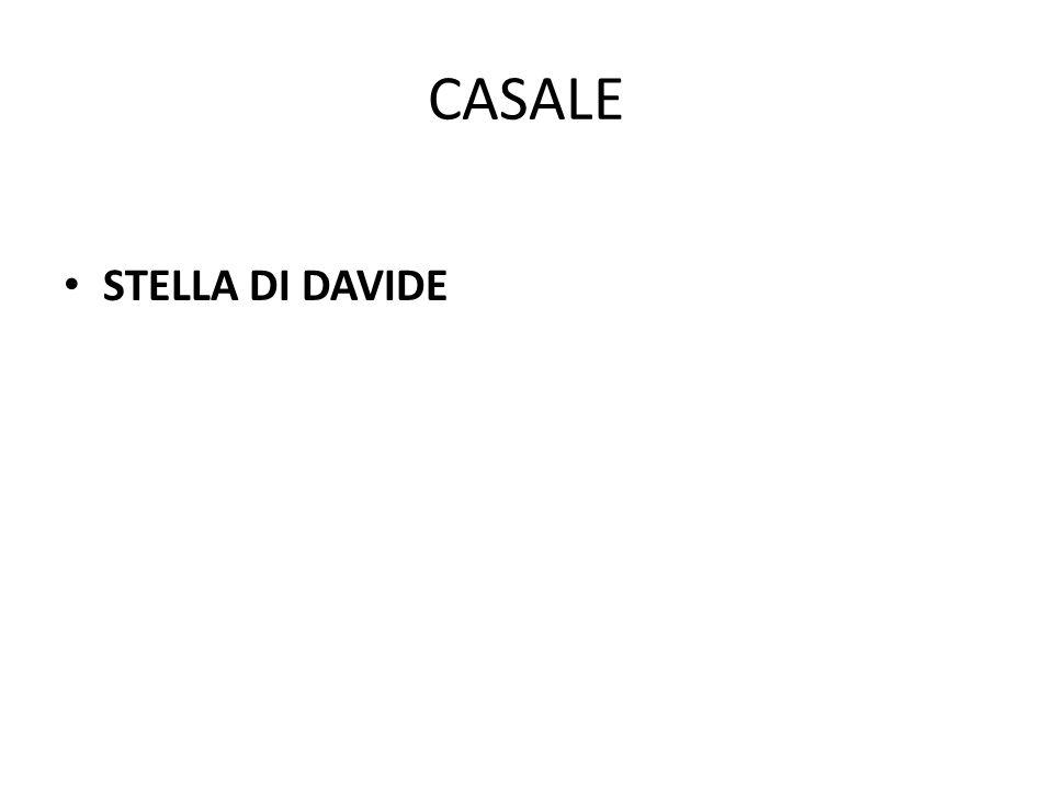 CASALE STELLA DI DAVIDE