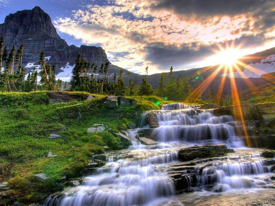 La materia luogo dell'anima Perchè Tre incontri La coscienza dell'acqua Non-località La coscienza del mondo Un unico tema UNITA'