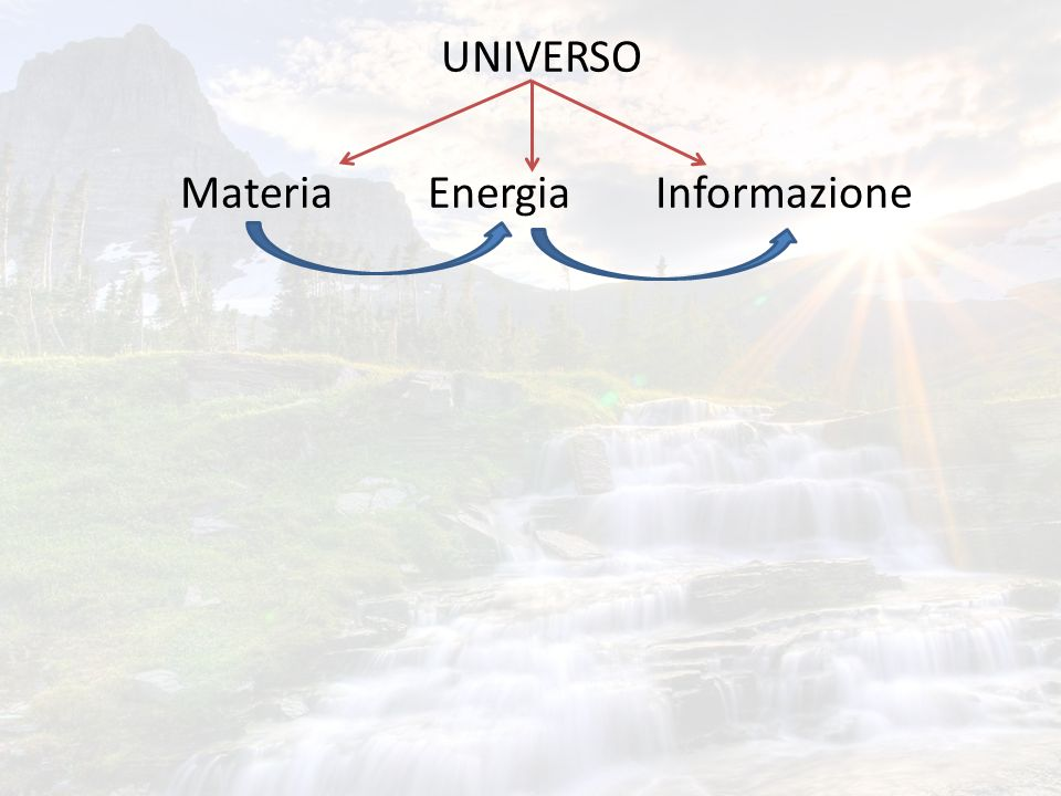UNIVERSO Materia Energia Informazione Campi informati Coscienza Campi morfici Campi morfogenetici Coscienza cosmica Amit Goswami Rupert Sheldrake