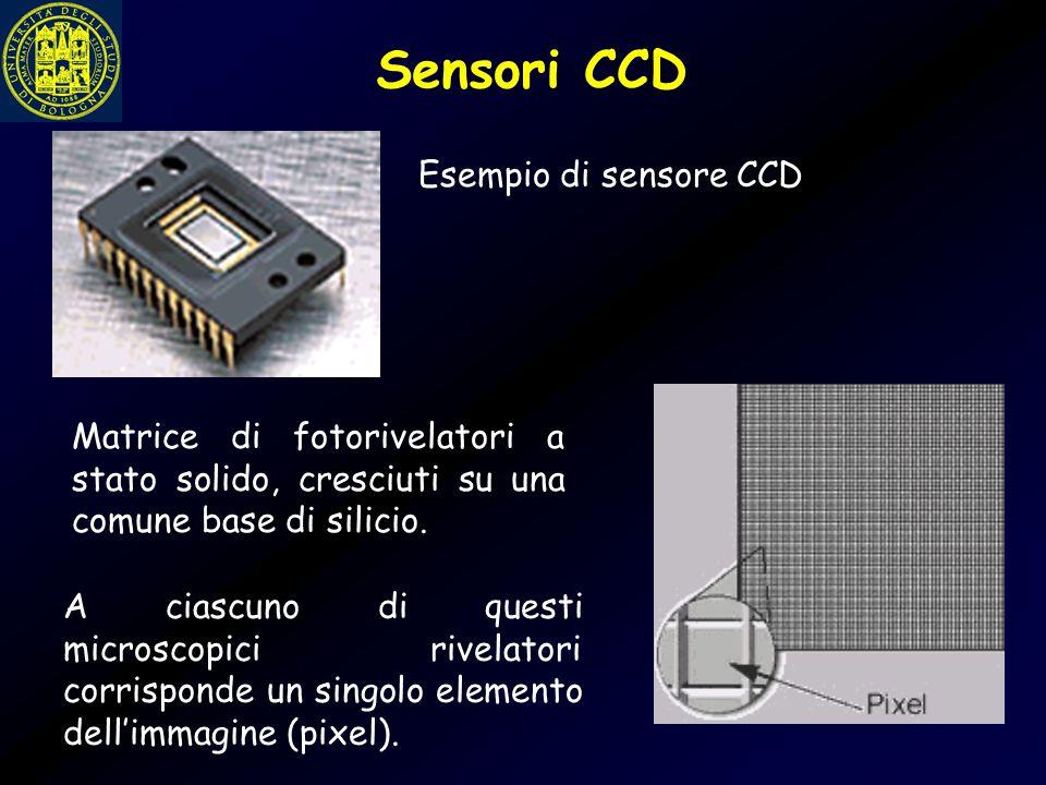 Esempio di sensore CCD Matrice di fotorivelatori a stato solido, cresciuti su una comune base di silicio. A ciascuno di questi microscopici rivelatori