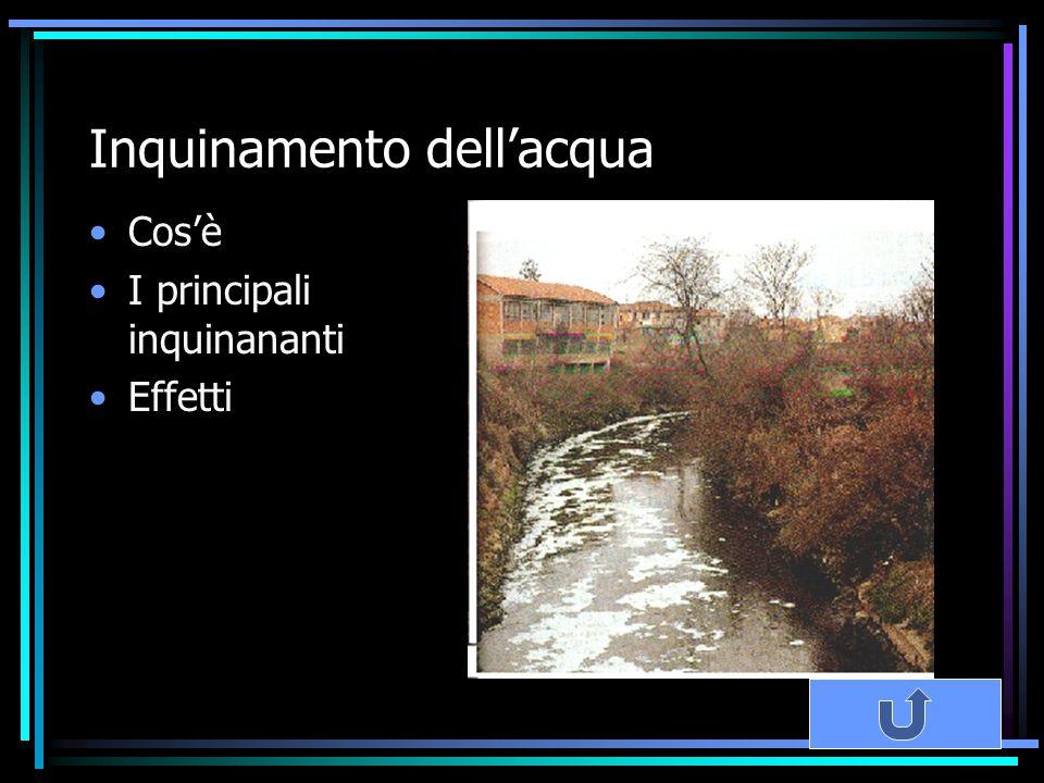 Inquinamento dell'acqua Cos'è I principali inquinananti Effetti