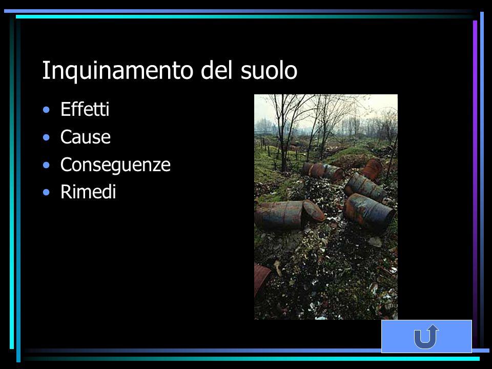 Inquinamento del suolo Effetti Cause Conseguenze Rimedi
