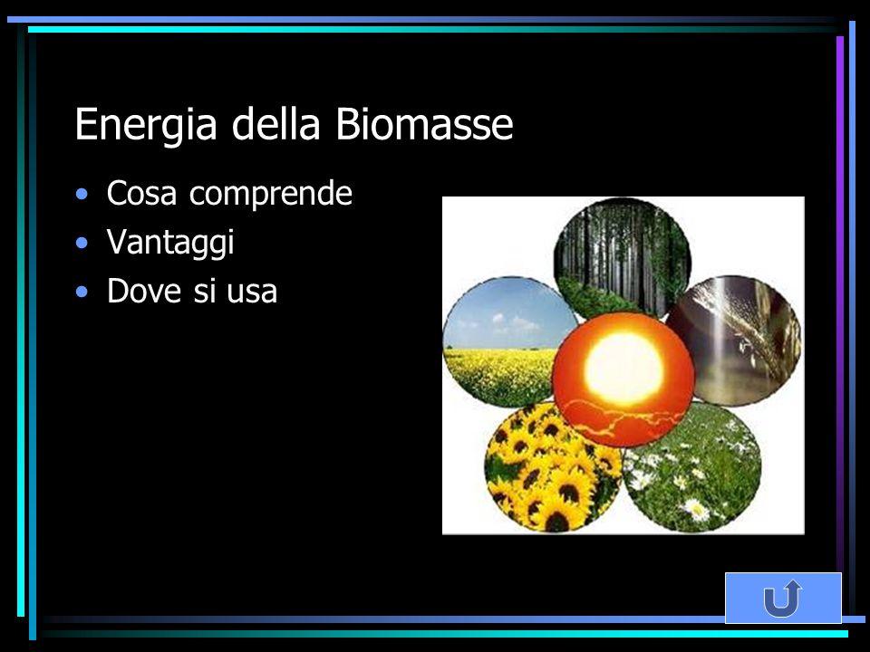 Energia della Biomasse Cosa comprende Vantaggi Dove si usa