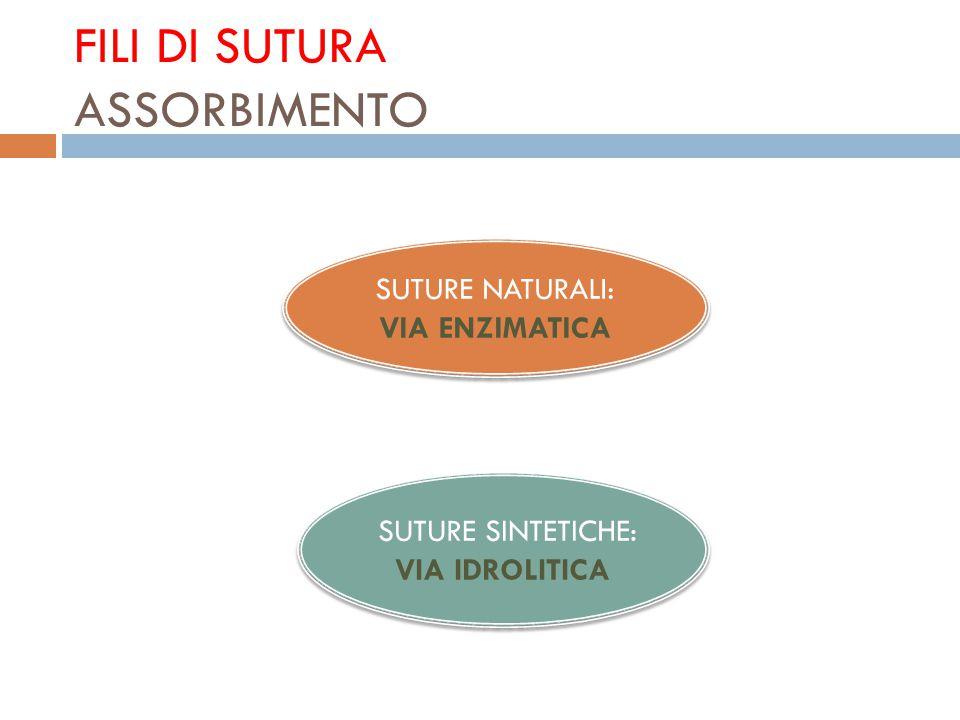 FILI DI SUTURA ASSORBIMENTO SUTURE NATURALI: VIA ENZIMATICA SUTURE NATURALI: VIA ENZIMATICA SUTURE SINTETICHE: VIA IDROLITICA SUTURE SINTETICHE: VIA I