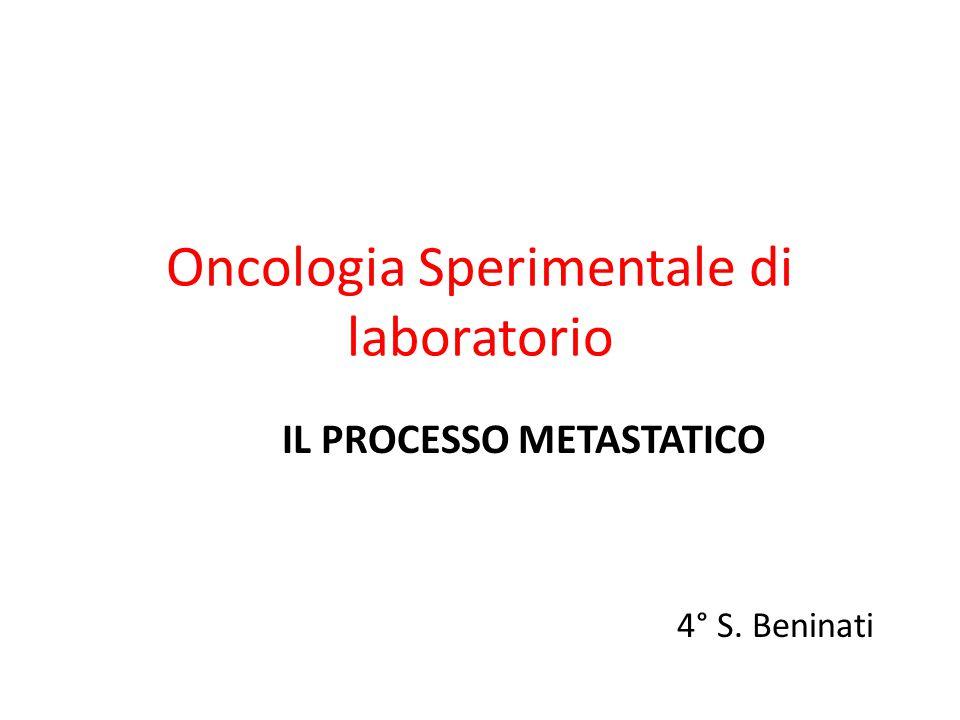 Oncologia Sperimentale di laboratorio IL PROCESSO METASTATICO 4° S. Beninati