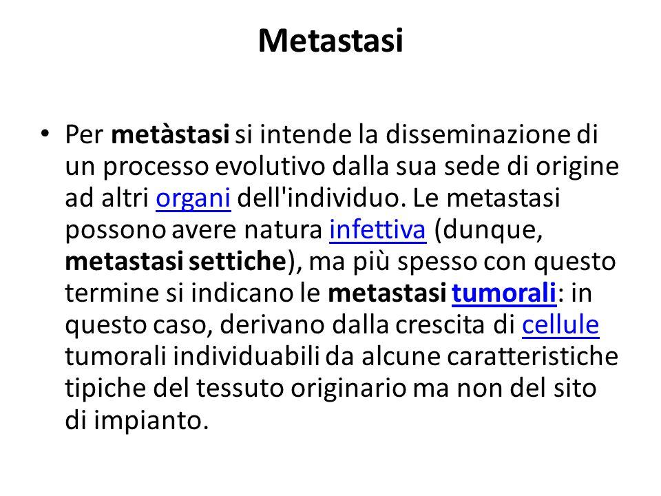 Meccanismi del processo metastatico La composizione cellulare delle neoplasie maligne è eterogenea e soltanto alcune cellule tumorali sono in grado di formare metastasi.