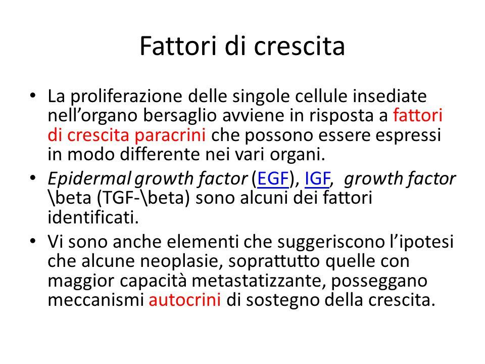 Fattori di crescita La proliferazione delle singole cellule insediate nell'organo bersaglio avviene in risposta a fattori di crescita paracrini che possono essere espressi in modo differente nei vari organi.
