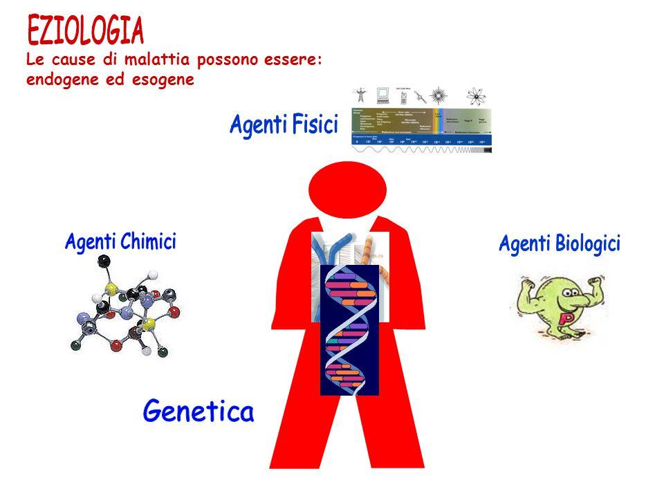 Le cause di malattia possono essere: endogene ed esogene