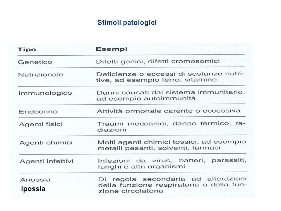 Stimoli patologici Ipossia
