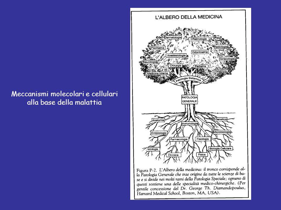 La Patologia è, secondo l etimologia, la dottrina delle malattie, cioè dei processi vitali abnormi [funzioni alterate].
