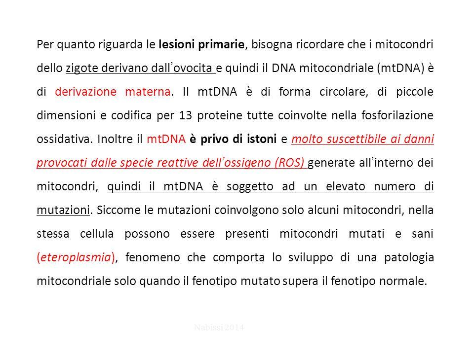 Per quanto riguarda le lesioni primarie, bisogna ricordare che i mitocondri dello zigote derivano dall'ovocita e quindi il DNA mitocondriale (mtDNA) è
