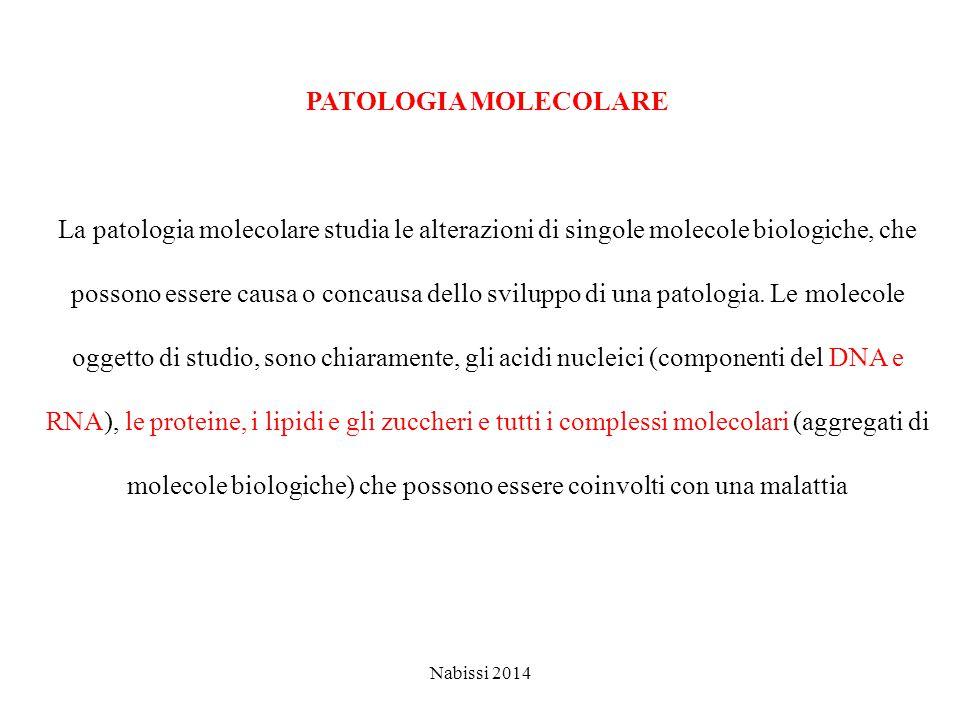 PATOLOGIA MOLECOLARE La patologia molecolare studia le alterazioni di singole molecole biologiche, che possono essere causa o concausa dello sviluppo di una patologia.