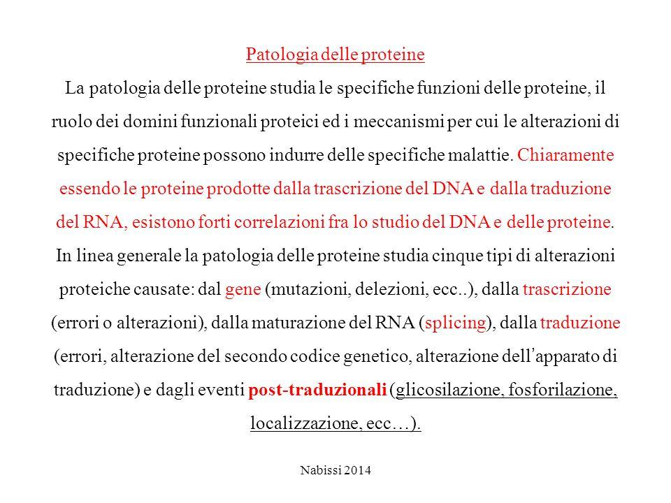 Patologia delle proteine La patologia delle proteine studia le specifiche funzioni delle proteine, il ruolo dei domini funzionali proteici ed i meccanismi per cui le alterazioni di specifiche proteine possono indurre delle specifiche malattie.