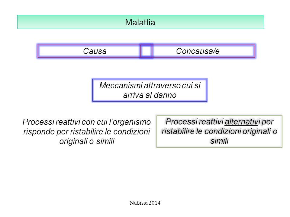 FATTORI PATOGENI INTRINSECHI Si identificano con alterazioni primitive del codice genetico ossia in difetti informazionali Possono essere suddivisi in tre categorie: –Malattie causate da alterazioni in una singola unità di trascrizione (malattie monofattoriali) –Malattie che derivano da una eredità poligenica, cioè legata a variazioni in piu' geni in loci diversi, alla quale possono associarsi a sovrapposti effetti ambientali (malattie multifattoriali) –Malattie derivate da anomalie cariotipiche Nabissi 2014