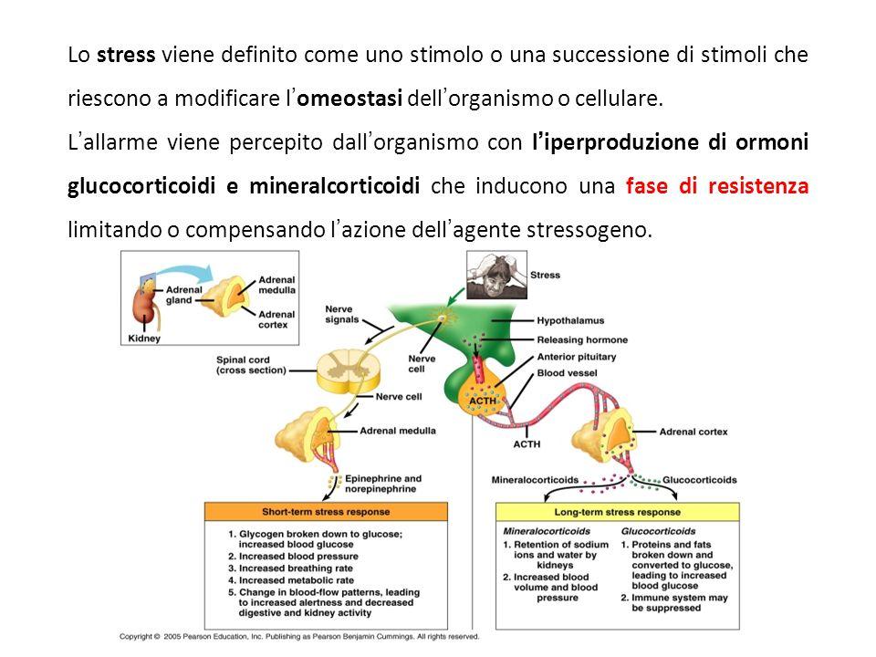 Lo stress viene definito come uno stimolo o una successione di stimoli che riescono a modificare l'omeostasi dell'organismo o cellulare.