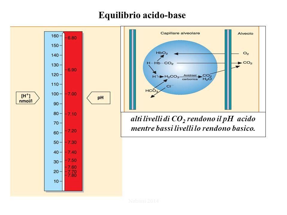 Equilibrio acido-base Nabissi 2014 alti livelli di CO 2 rendono il pH acido mentre bassi livelli lo rendono basico.