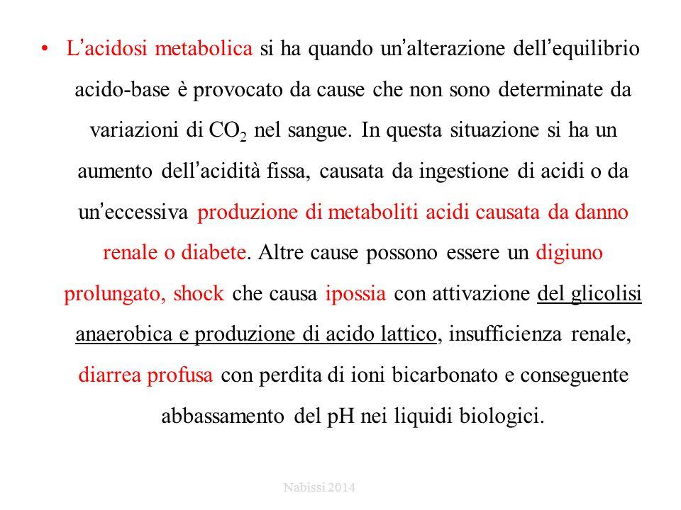 L'acidosi metabolica si ha quando un'alterazione dell'equilibrio acido-base è provocato da cause che non sono determinate da variazioni di CO 2 nel sangue.