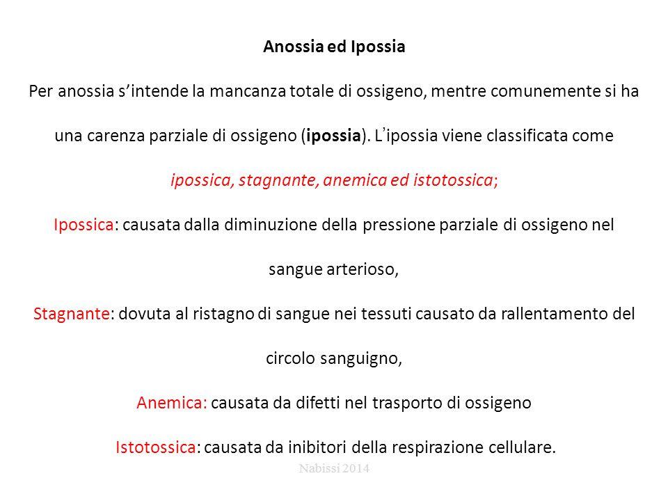 Anossia ed Ipossia Per anossia s'intende la mancanza totale di ossigeno, mentre comunemente si ha una carenza parziale di ossigeno (ipossia). L'ipossi