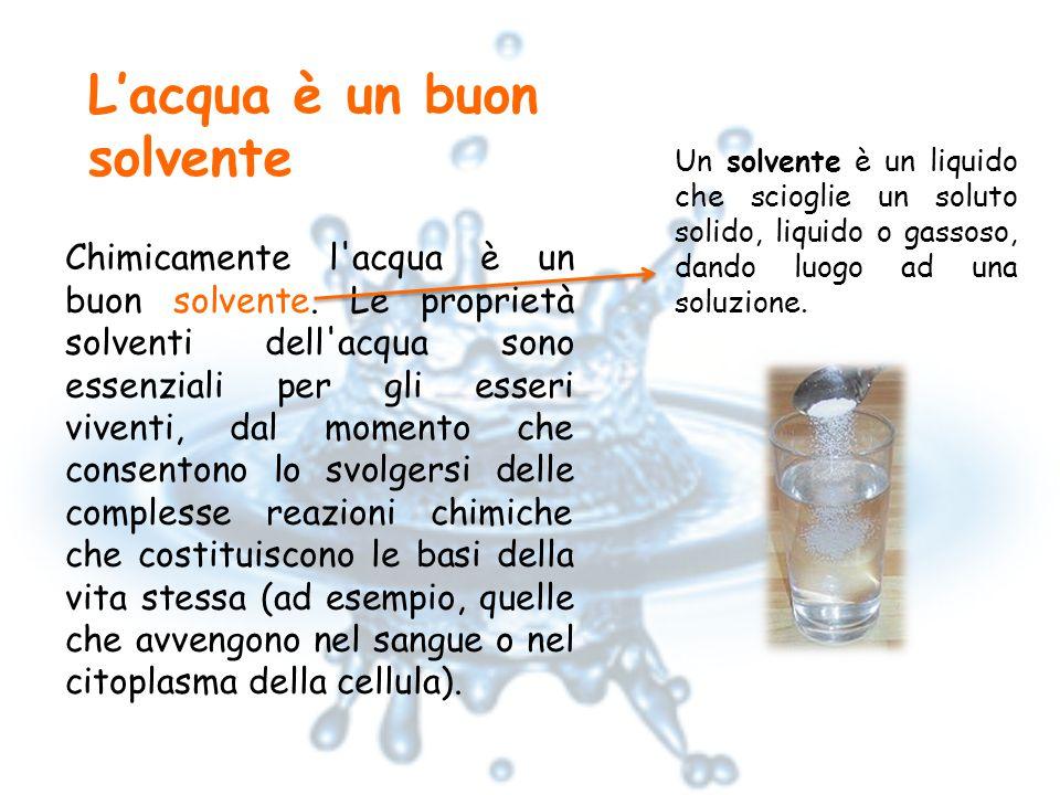 L'acqua è un buon solvente Chimicamente l acqua è un buon solvente.