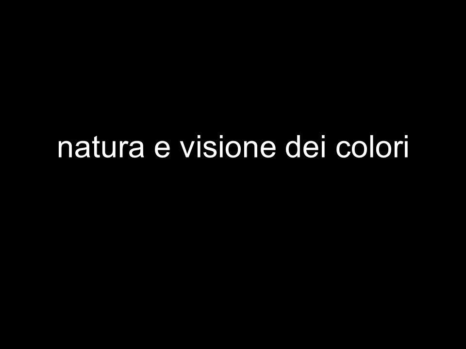 natura e visione dei colori