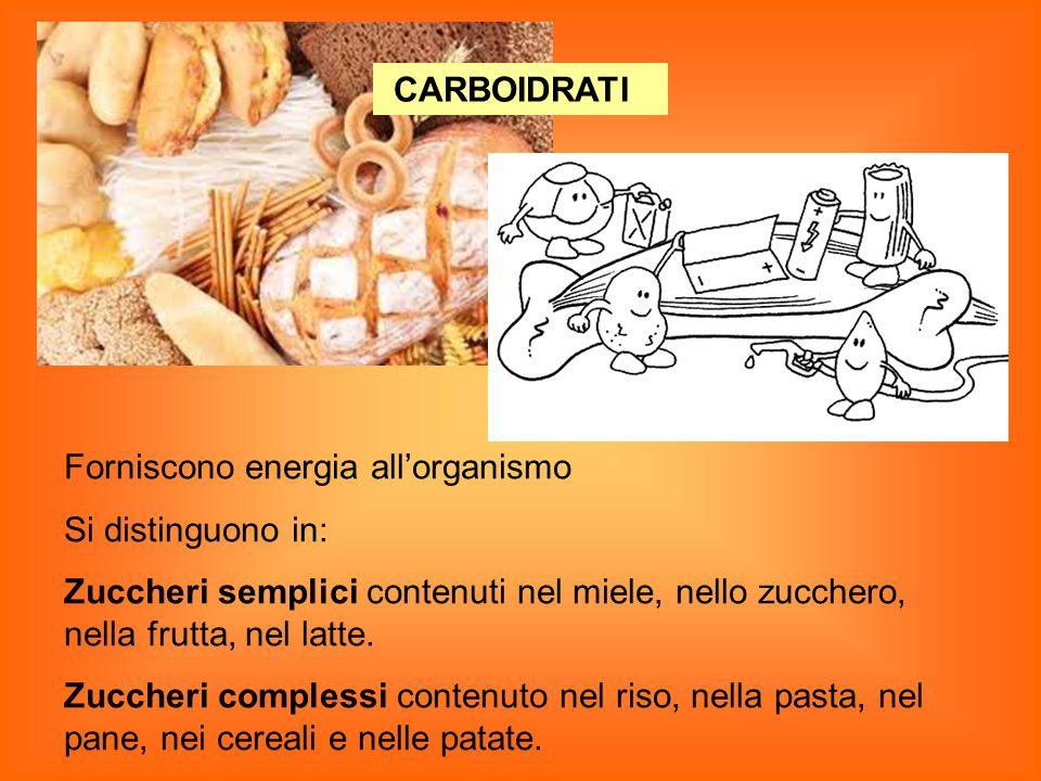 CARBOIDRATI Forniscono energia all'organismo Si distinguono in: Zuccheri semplici contenuti nel miele, nello zucchero, nella frutta, nel latte.